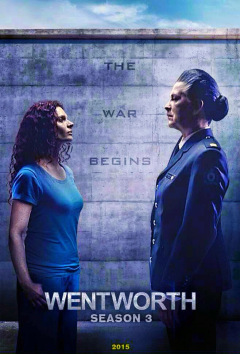 Pamela Rabe as Joan Ferguson in Wentworth Season 3